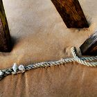 Old rope by collpics
