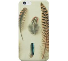 The Feather Collection iPhone Case/Skin