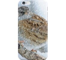 winter bird scene iPhone Case/Skin