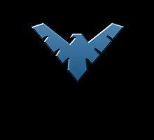 Nightwing  by brodo458