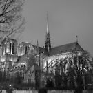 Notre Dame at night. by naranzaria