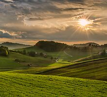 Play of the sun by Peter Zajfrid