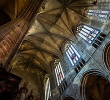 Narbonne Cathedral by Dave Hare