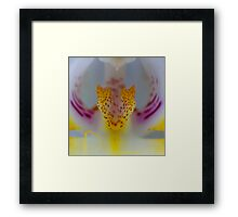 Panther Orchid  Framed Print