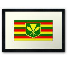 Kanaka Maoli - Native Hawaiian Flag Framed Print