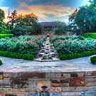 Fort Worth Botanical Gardens by Jay  Goode
