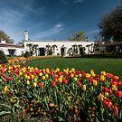 Dallas Arboretum by Jay  Goode