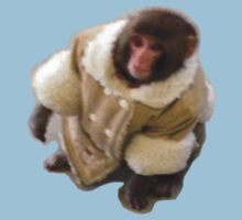 Darwin the Ikea monkey! - Larger Image by anthonysjb