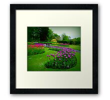 A colourful garden... Framed Print