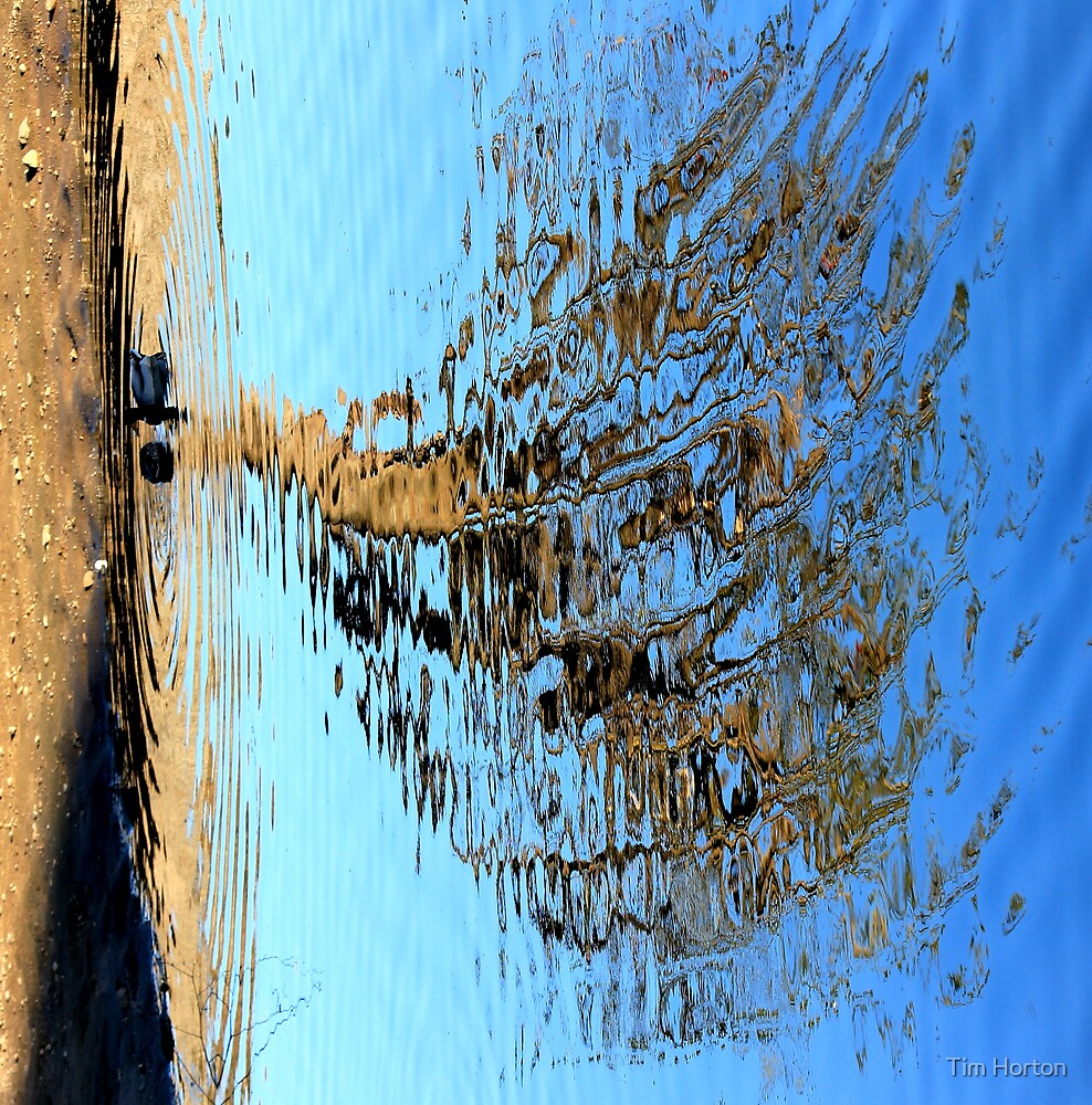 reflections 1 by Tim Horton