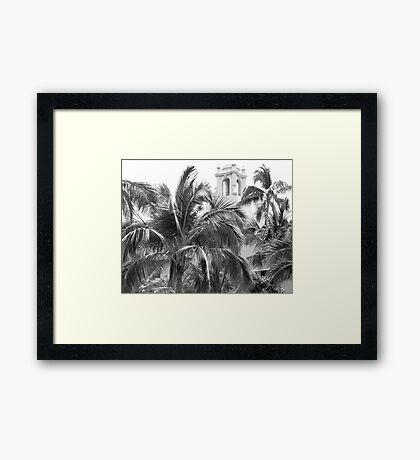 A Sneak Peek at the Royal Hawaiian Hotel Through the Palm Trees Framed Print