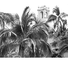 A Sneak Peek at the Royal Hawaiian Hotel Through the Palm Trees Photographic Print