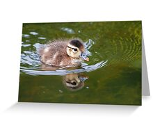 The Not So Ugling Duckling Greeting Card