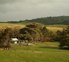 Joe Mortelliti Gallery - McHarg Range, near Heathcote, central Victoria, Australia.  by thisisaustralia