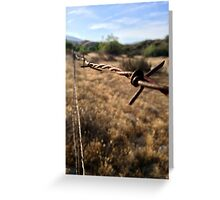 The Barbwire Greeting Card