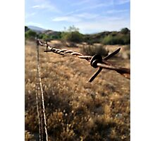 The Barbwire Photographic Print