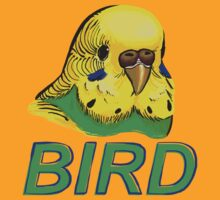 BIRD - Budgerigar by Ari Hunt