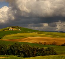 Val d'Orcia (Tuscany) by maumar70