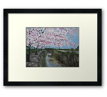 Japanese cherry blossom - painted from a series of photos from Japan Framed Print