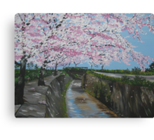 Japanese cherry blossom - painted from a series of photos from Japan Canvas Print