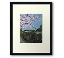 Falling Cherry Blossom in Japan - with river Framed Print