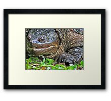 Come Here Funny Man with a Camera . . . Just a Little Closer . . . Framed Print