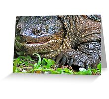 Come Here Funny Man with a Camera . . . Just a Little Closer . . . Greeting Card