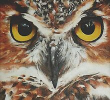 OwL by Cherise Foster