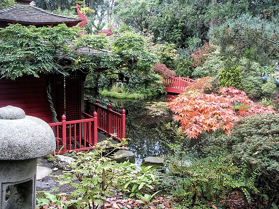 Japanese garden by Roxy J