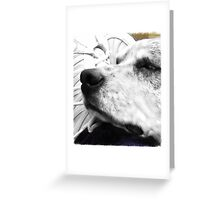 Rest Your Head Greeting Card