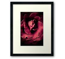Climbing back in to snuggle Framed Print