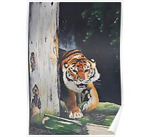 Prowling Tiger  Poster