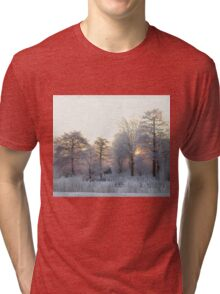 The first morning after the first snow... Tri-blend T-Shirt
