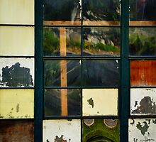 Colorsplash Window by bookarts