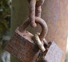 Locked Up by mark alan perry