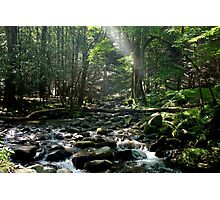 Cades Cove Creek Photographic Print