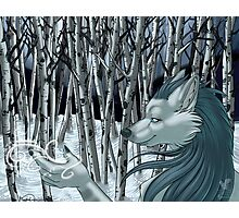 Winter Wolf Photographic Print