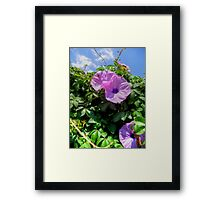 ©GS And Some Clouds Framed Print