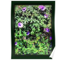 ©GS-DA Floral Wall Paintography Poster