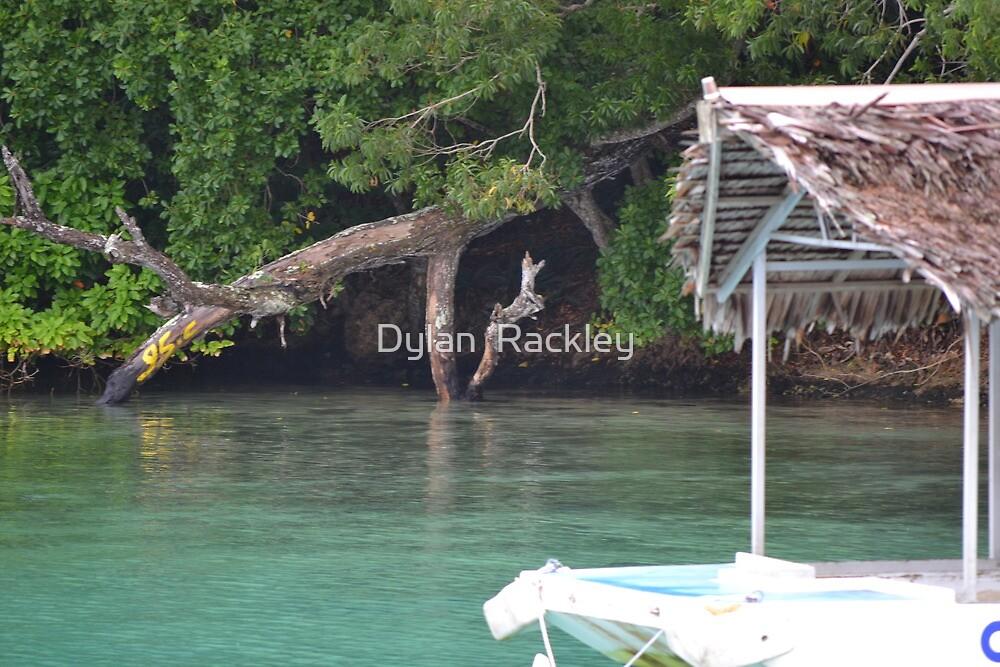 Vanuatu - Floating hut by Dylan  Rackley