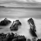 Bermagui Point by Brett Thompson