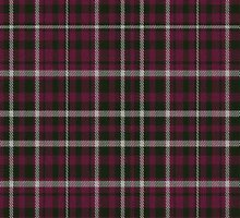02637 Lane County, Oregon E-fficial Fashion Tartan Fabric Print Iphone Case by Detnecs2013