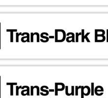 Brick Sorting Labels: Trans-Bright Green, Trans-Green, Trans-Dark Blue, Trans-Purple, Trans-Pink Sticker