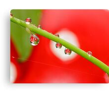 H20 Macro - Strawberry Drops Canvas Print