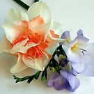 1569-multicolor flowers by elvira1