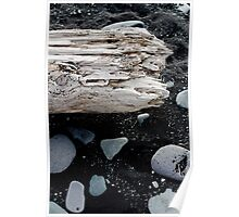 Driftwood in Iceland Poster