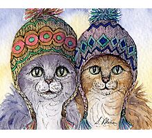 The knitwear cat sisters in hats Photographic Print