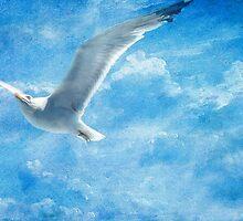If I Was a Bird by EvaMarIza