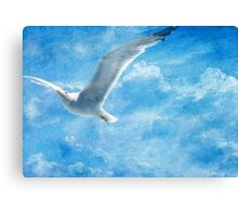 If I Was a Bird Canvas Print