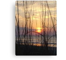 Beach Sunrise Through the Dune Grass  Canvas Print